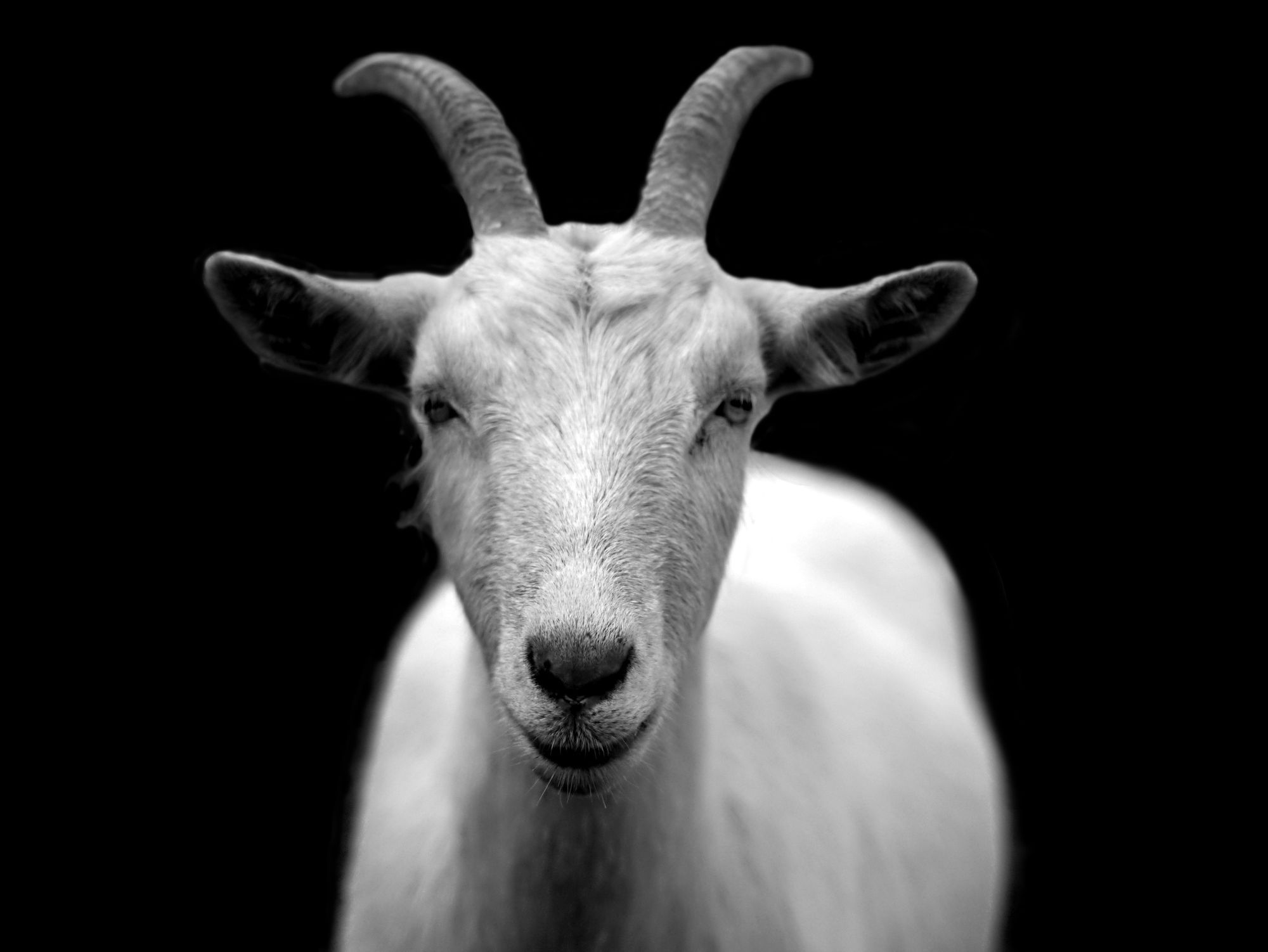 Getting Started with WebGoat